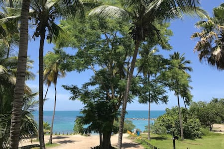 Romantic Beach Front Condo - 2/1, WiFi/Cable/View