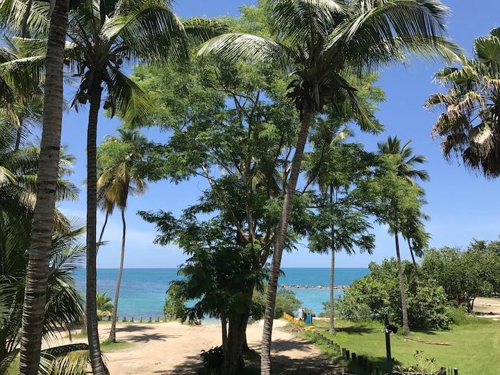 Romantic Beach Front Condo - 2/1, WiFi/View