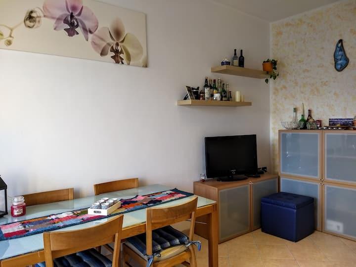 Intero appartamento a Torino