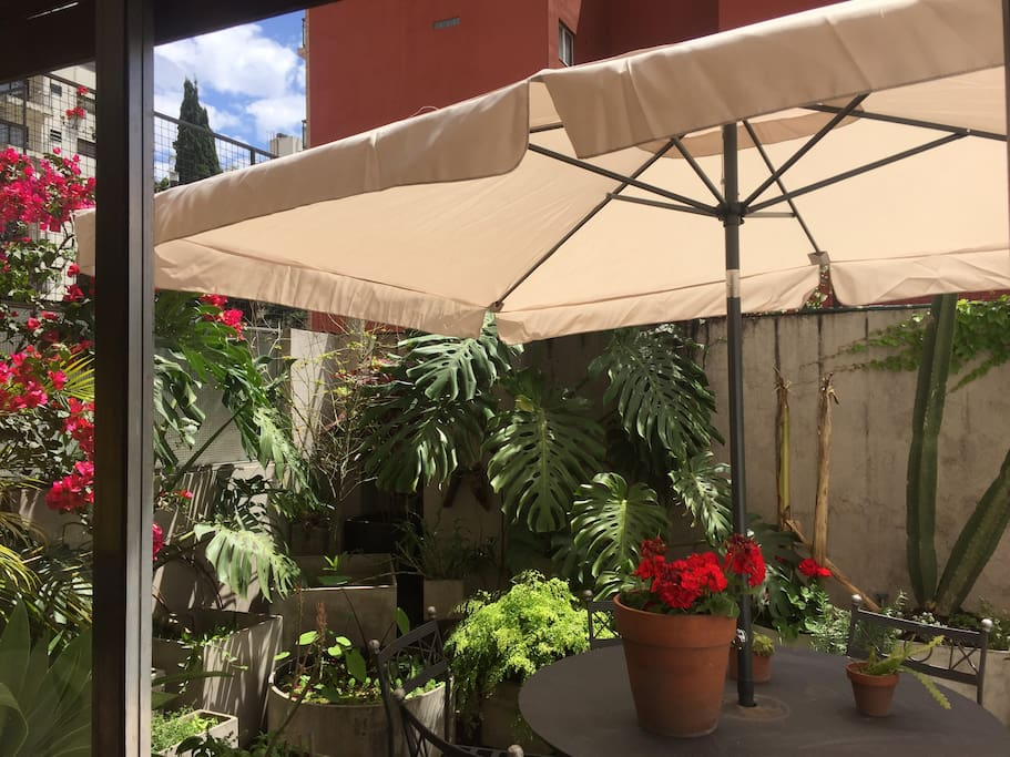 Terraza al living, shared space