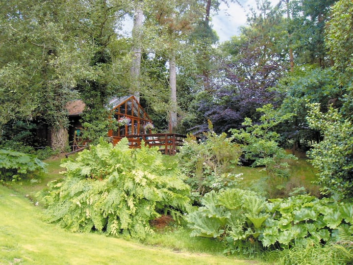 Forest Lodge (W43511)