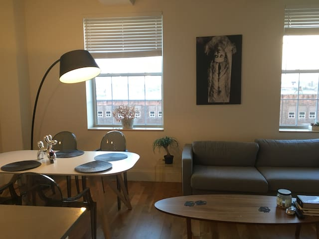 Beautiful, Spacious Apartment Next to Yale - New Haven - Apartament