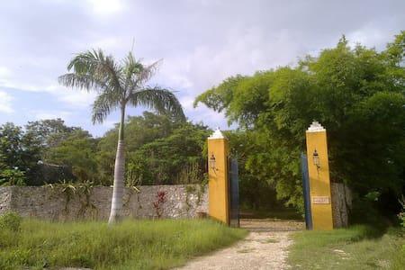 Hacienda Masul en Yucatán - Umán - 其它