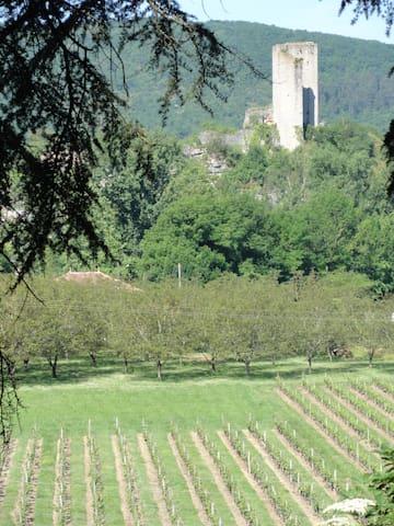 Tussen de wijnvelden van Zuid-Frankrijk - Luzech - Flat