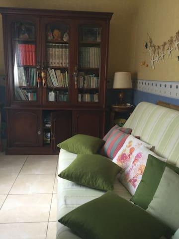 canapé et bibliothèque danc la pièce_bureau