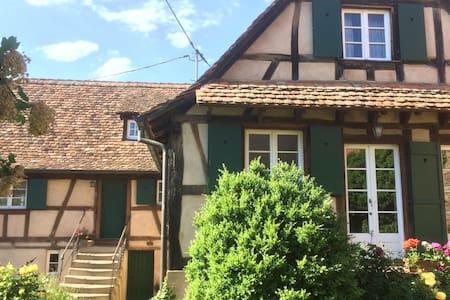 Gîte Alsace Les Chotzi's