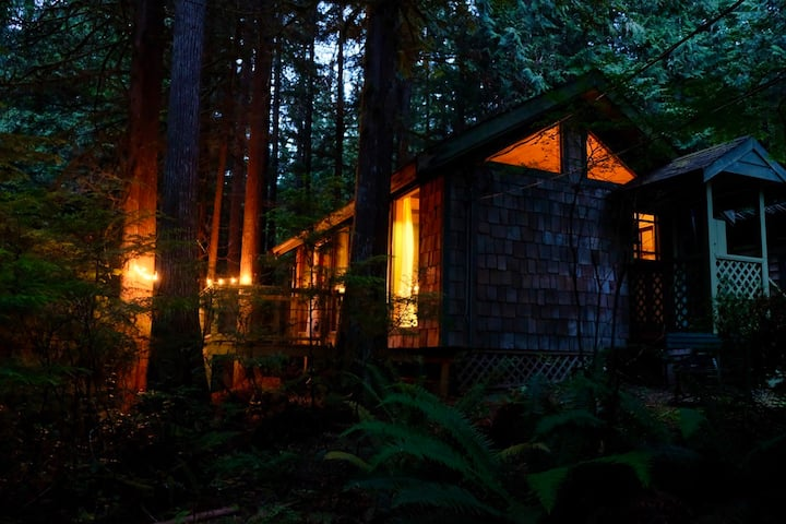 Roberts Creek Rainforest Cabin at Gough Creek