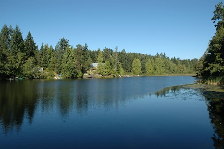 Pristine swimming Lake with sunny beach & Forest