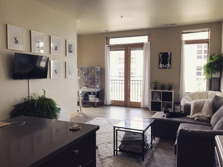 Pet-friendly apartment near campus