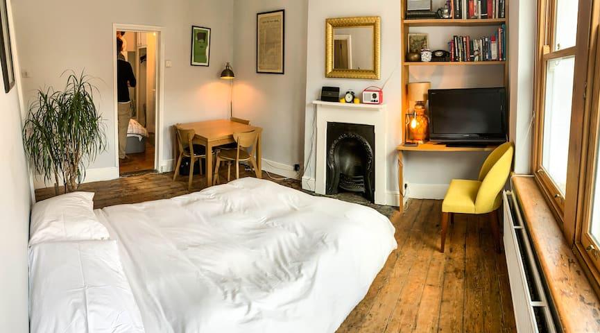 Central Classic Marylebone Georgian Apartment