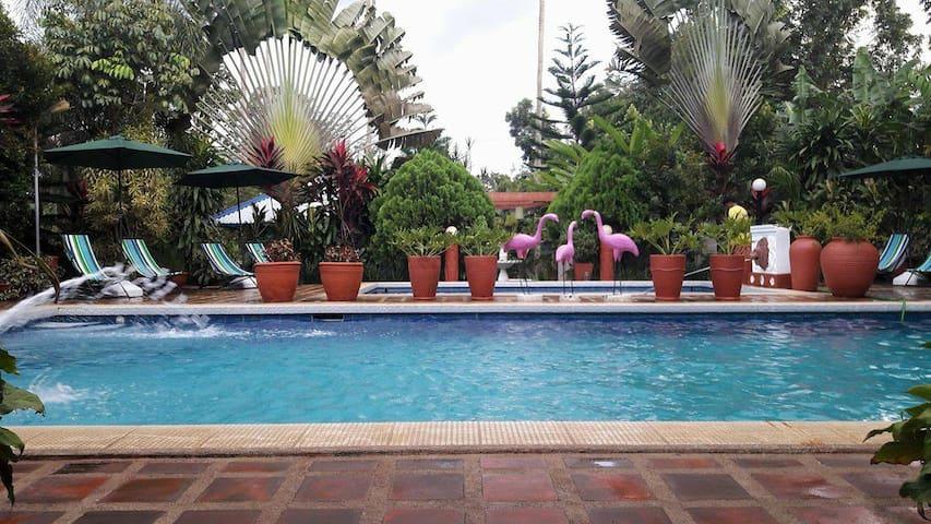 Villa Belvedere Private Hot Spring Resort
