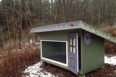 A Hut in The Woods? Yes, and more! - Ithaca