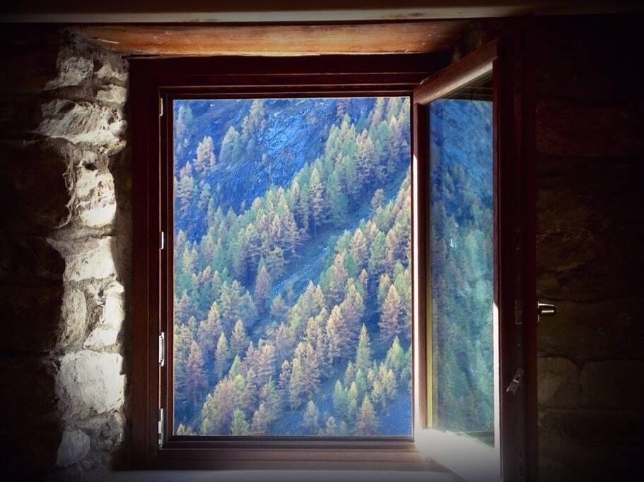 Vista autunno ovest Le Petit Cadeau