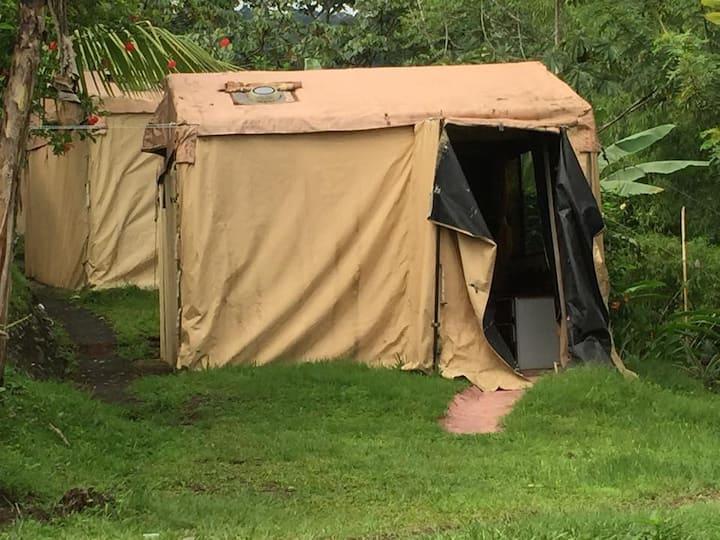 """Standard Jungle Tent Shared Bath"""
