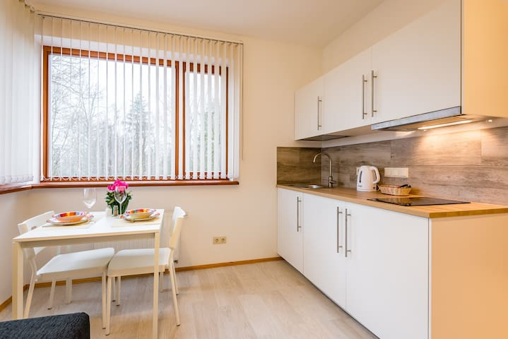 Riga Airport Jurmala apartment 2 - Ryga - Dom