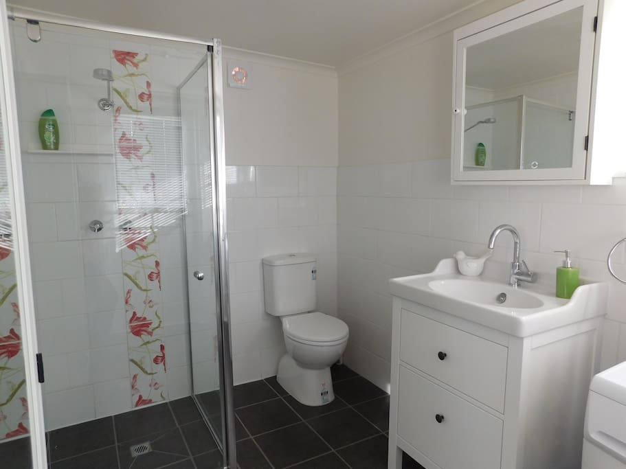 New bathroom includes shower/toilet and washing machine. Good quality towels are included.