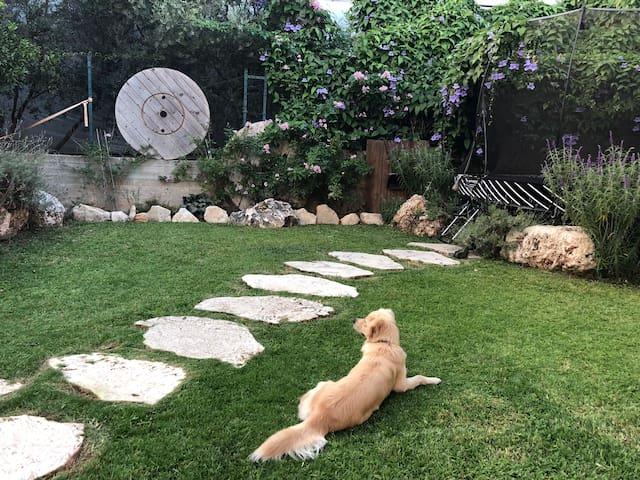 Winemaker's Villa in Nature