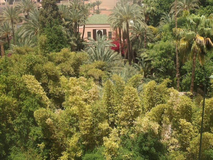 Amazing view on Majorelle Garden.
