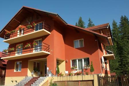 Top Mountain - Brașov