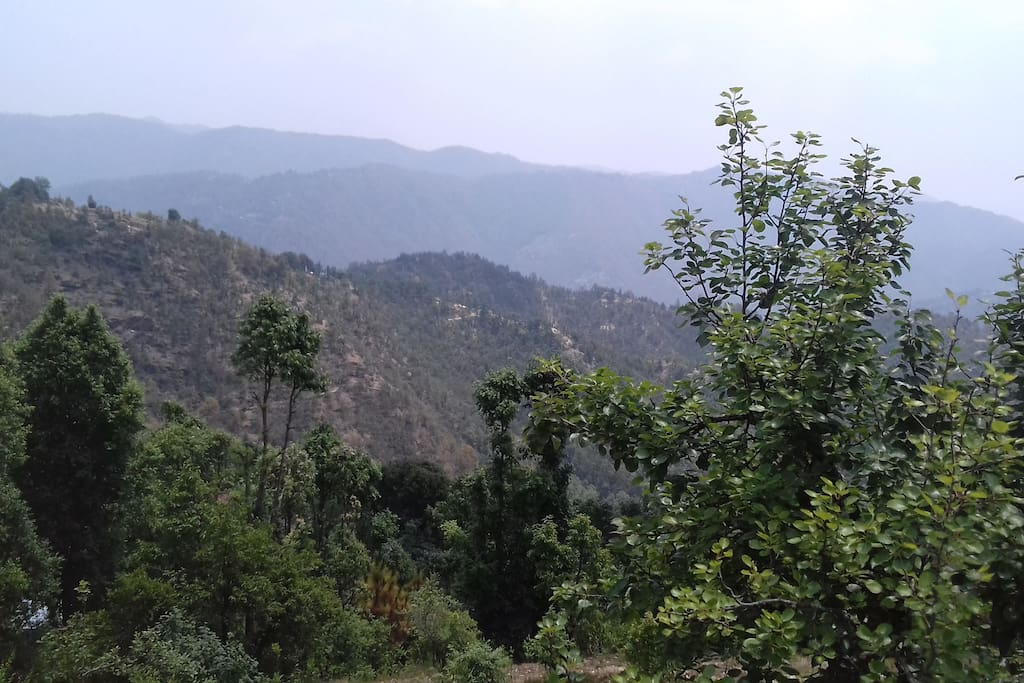 View from camps