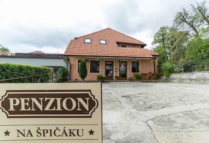 Penzion Na Špičáku - Double Room č.2