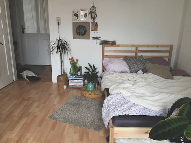 cozy room near center