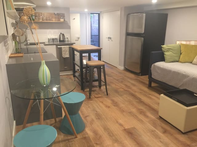 Large lower level apartment in central Toronto