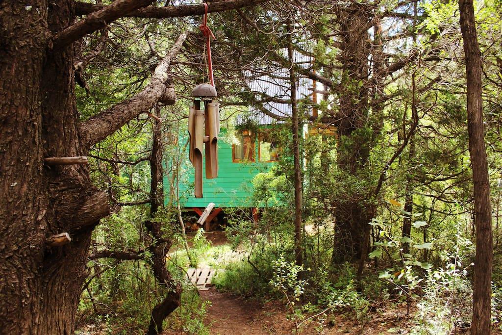 La casita del bosque nativo cabins for rent in san - Casitas del bosque ...