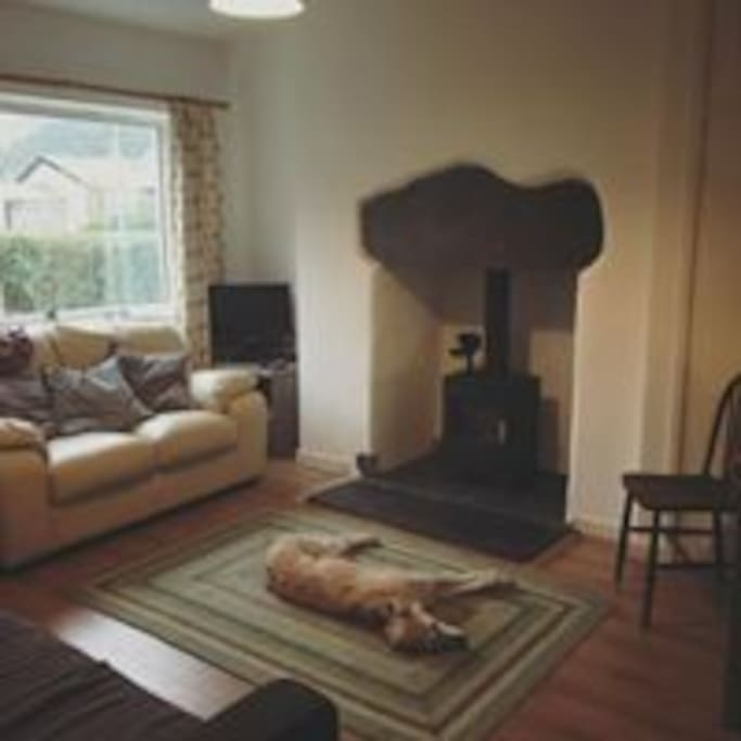 Cosy living room with toasty woodburner. Lurcher not included!