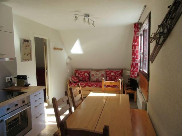 Grand appartement aux 7 Laux pied des pistes