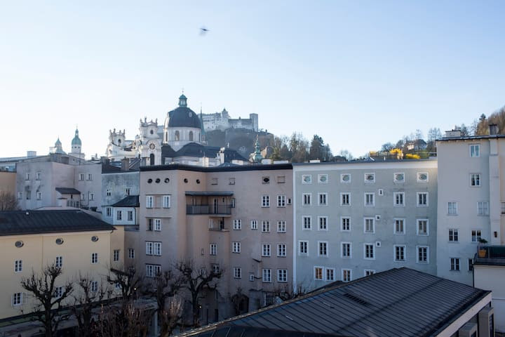 Designer 3B/2.5B Tri Level Apt in Salzburg City