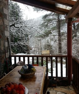 Zarouchla Mountain House in the Forest - Zarouchla - Apartamento