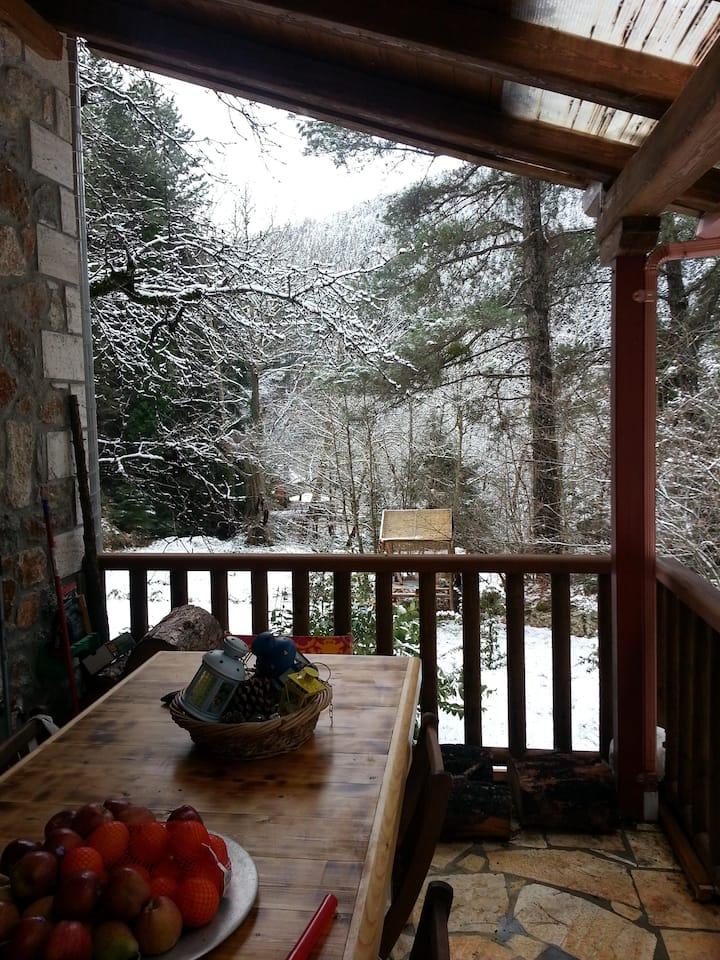 Zarouchla Mountain House  Forest