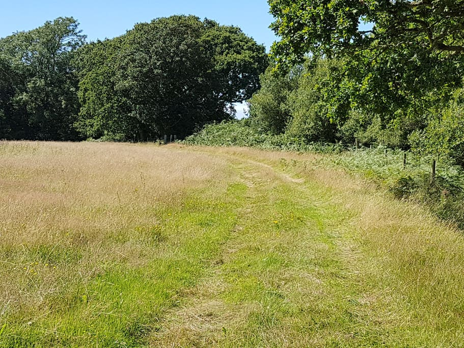 The driveway - through two fields to your own peaceful space.