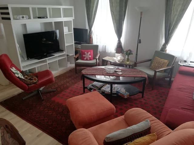 Ella's Living Room With Sofa Bed in City Center