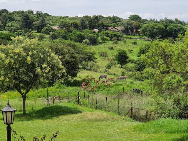 North Riding  Tranquil Reserve Ideal for business