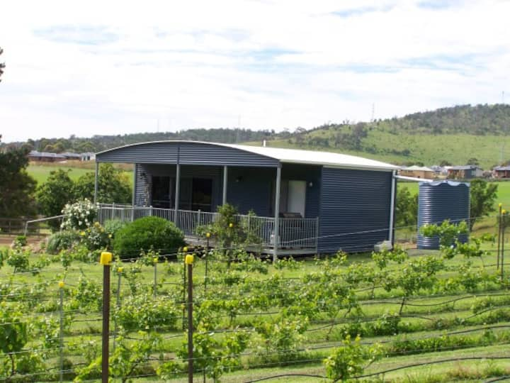 Country styled cottage set amidst vineyard/orchard