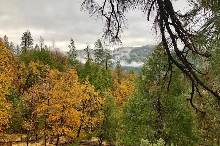Cozy mountain cabin | 4-season recreation & VIEWS