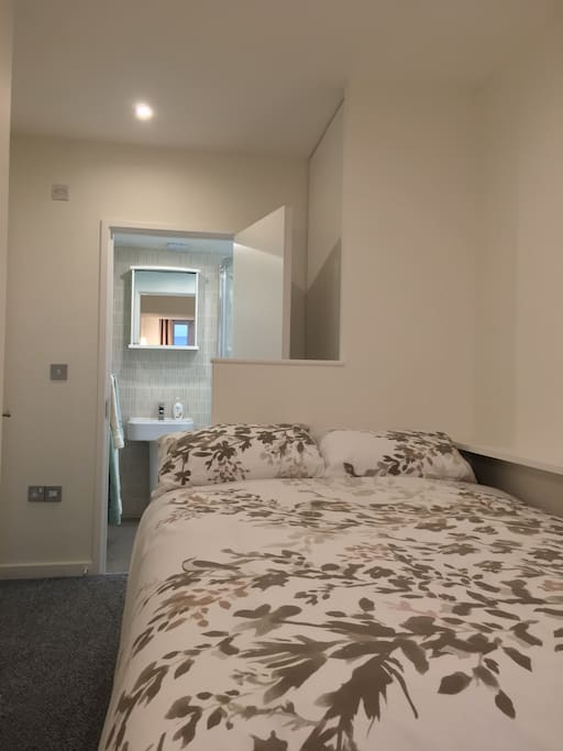 Comfortable bed, clean room with private bathroom (shower and toilet)