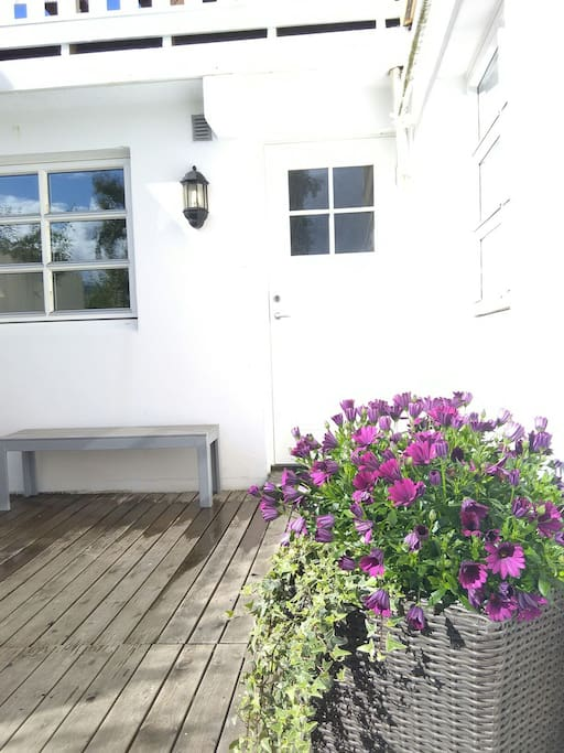 Entrance to apartment from patio