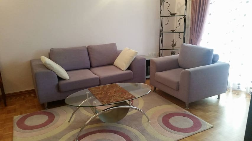 A cozy apartment in city center - Baku - Apartament