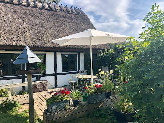Idyllic farmhouse in the Danish countryside B&B