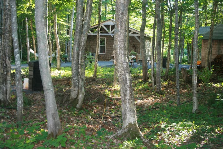 another view of cabin #1