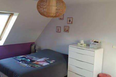 Chambre très spacieuse dans coquet appartement - Oloron-Sainte-Marie