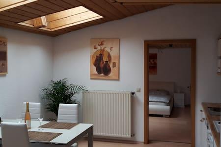 5 min to Base grossräumige Wohnung mit Garten Home - Kaiserslautern - Apartemen