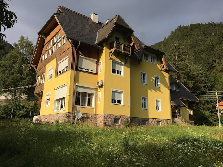 Villa Fortuna Zimmer Nr.9, Oberdrauburg