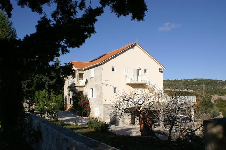One bedroom apartment with air-conditioning Sumartin, Brač (A-757-b)