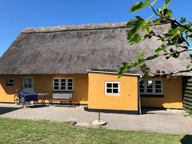 Strandgade 5, Bagenkop