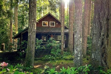 Charming Log Cabin at Lake Cushman
