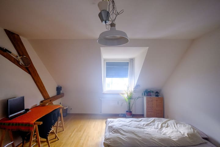 Private room at Messeplatz: Cosy and comfy! - Basel - Condominium